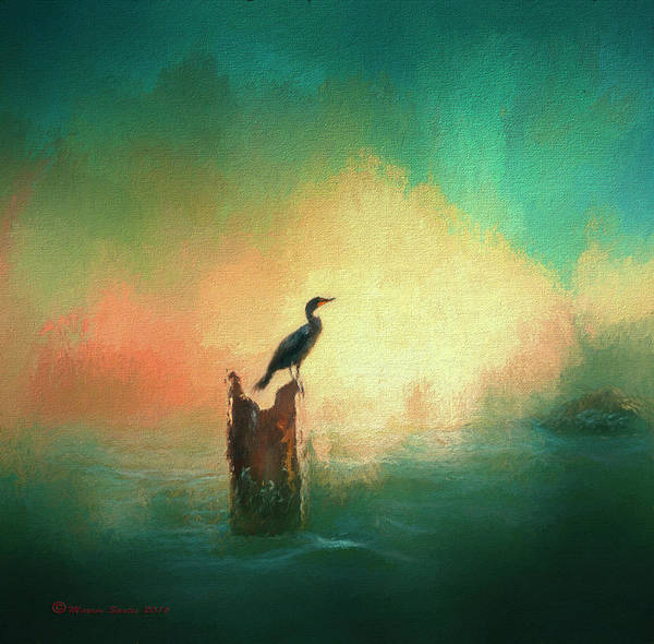 Fauna Mixed Media - Cormorat Sunset by Marvin Spates