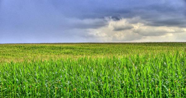 Photograph - Corn Forever by Sam Davis Johnson
