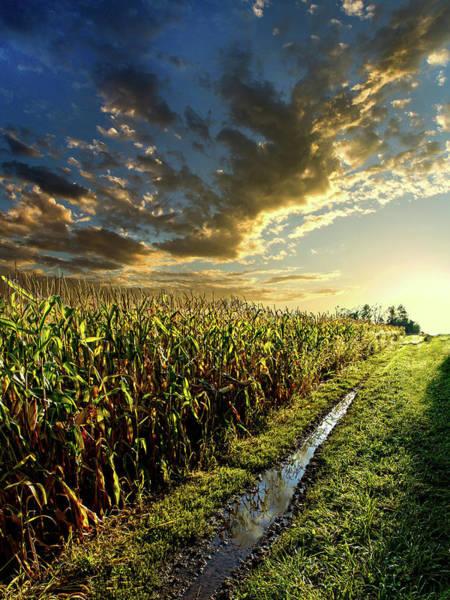 Corn Wall Art - Photograph - Corn Road by Phil Koch
