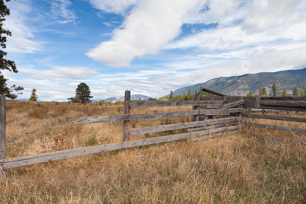 Photograph - Corner Fence by Fran Riley