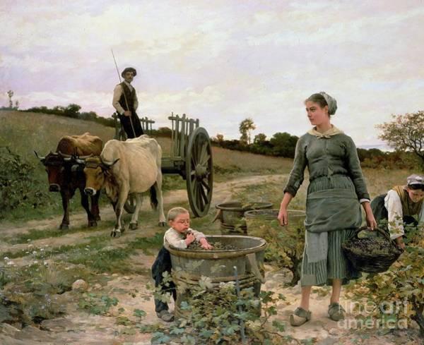 Family Farm Painting - Corner Of A Vineyard by Edouard Debat Ponsan