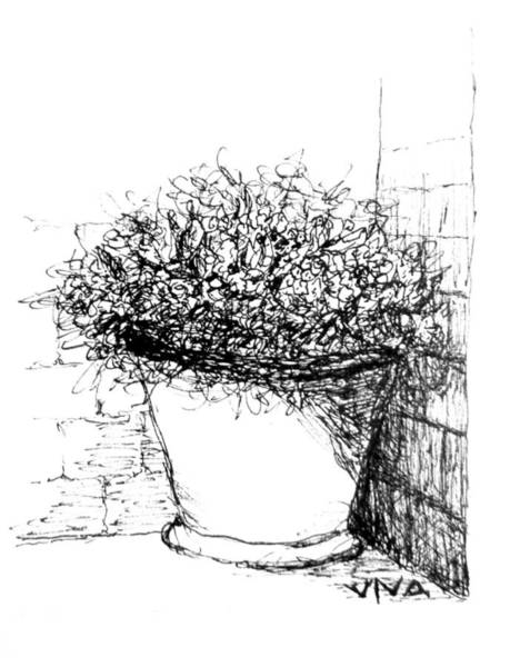 Drawing - Corner Pot Sketch by VIVA Anderson