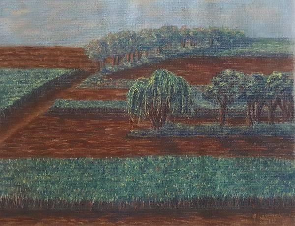 Wall Art - Pastel - Cornfields by Joann Renner