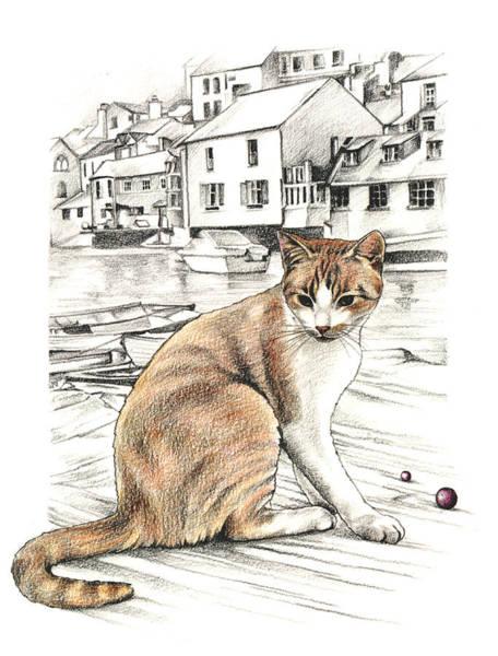 Cornish Cat Art Print