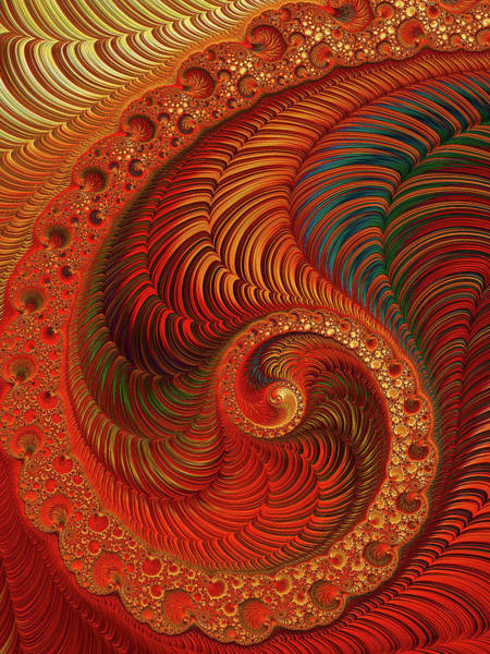 Digital Art - Cornucopia by Susan Maxwell Schmidt