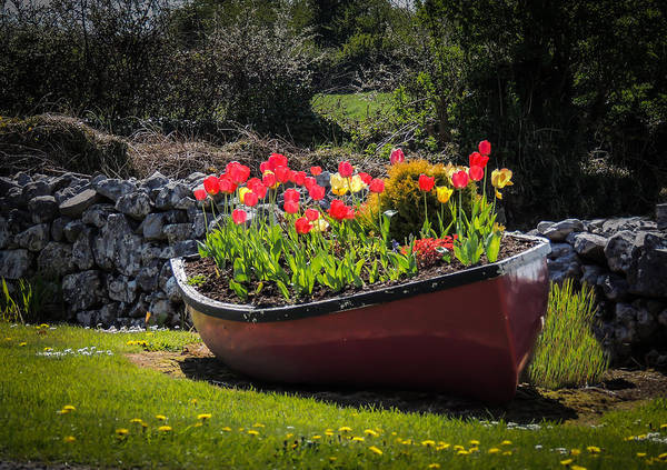 Photograph - Corofin Flower Boat by James Truett