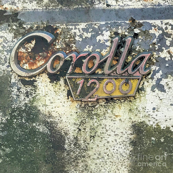 Photograph - Corolla 1200 by Terry Rowe