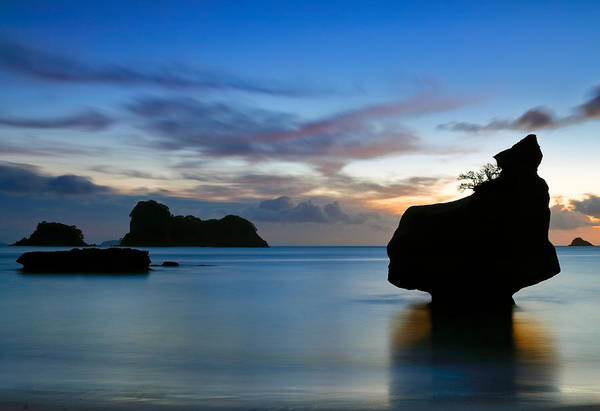 Photograph - Coromandel Dawn by Nicholas Blackwell