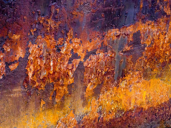 Photograph - Corrosion by Robin Zygelman
