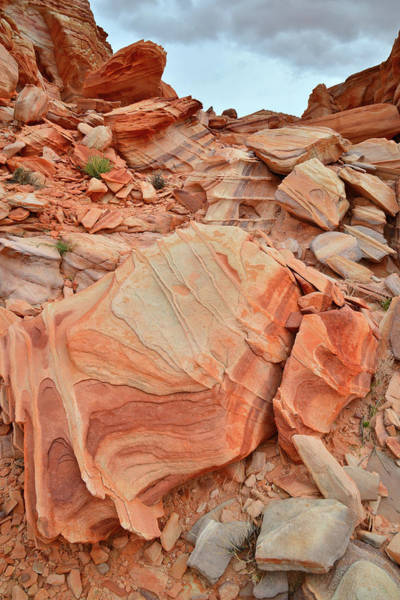 Photograph - Corrugated Color In Valley Of Fire by Ray Mathis