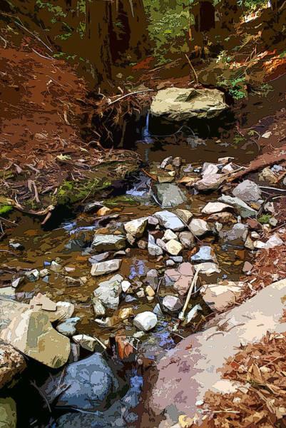 Photograph - Corte Madera Creek On Mt Tamalpais #7 Enhanced Image by Ben Upham III