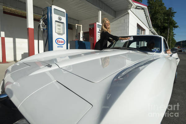 Photograph - Corvette Hood by Dan Friend