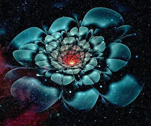 Digital Art - Cosmic Flower by Anastasiya Malakhova