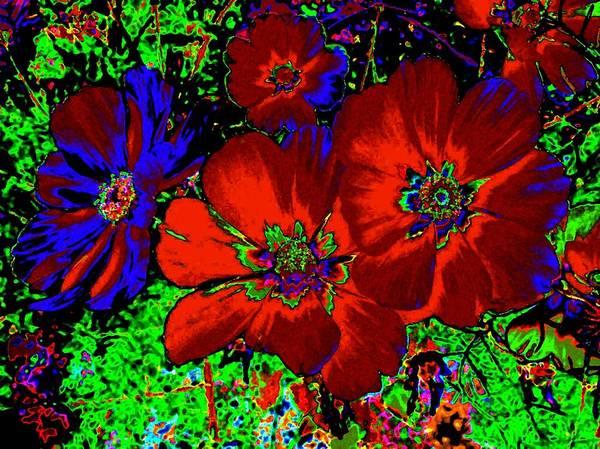 Wall Art - Digital Art - Cosmos Abstract by Will Borden