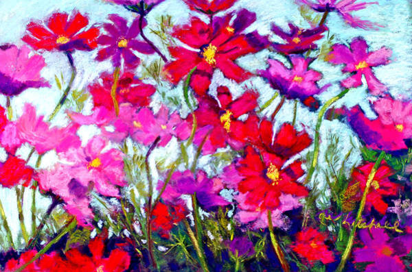 Wall Art - Painting - Cosmos Bouncing In The Breeze by Cheryl Whitehall