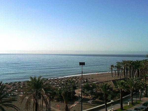 Photograph - Costa Del Sol Ocean View Palm Tree Spain by John Shiron