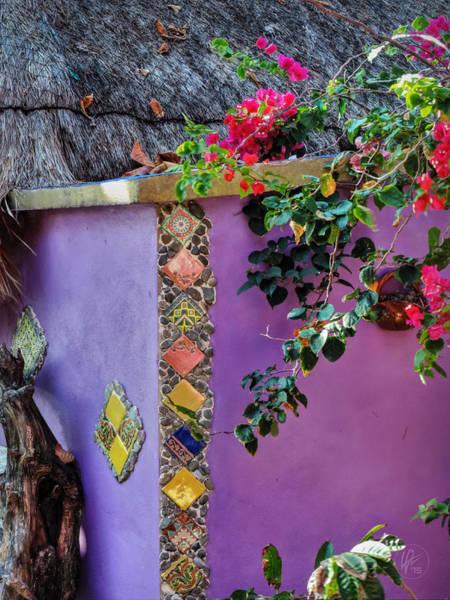 Photograph - Costa Maya Abstract 002 by Lance Vaughn