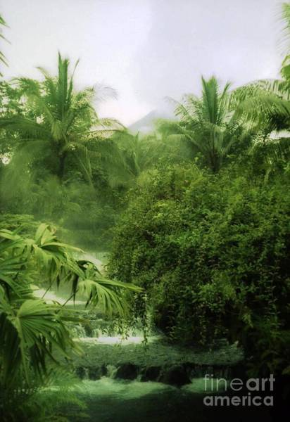 Photograph - Costa Rica Lush Hot River by Ted Pollard