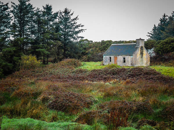 Photograph - Cottage In The Irish Countryside by James Truett