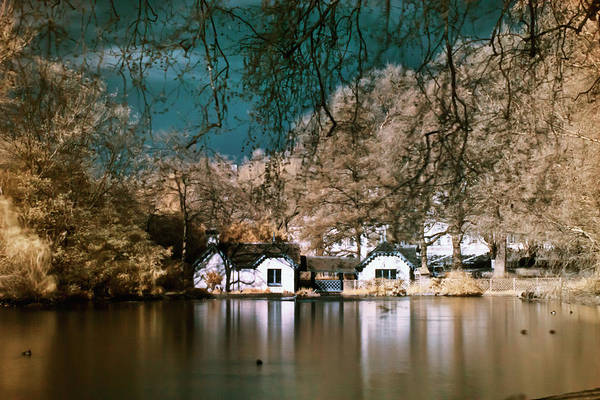 Photograph - Cottage On The Lake by Helga Novelli