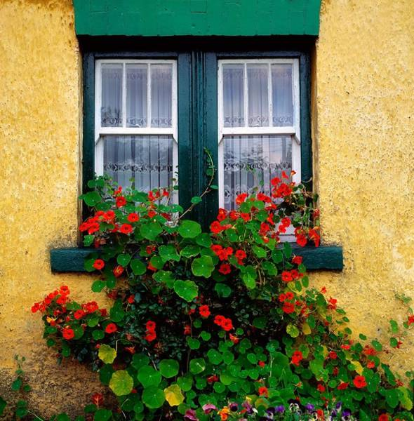 Abode Photograph - Cottage Window, Co Antrim, Ireland by The Irish Image Collection