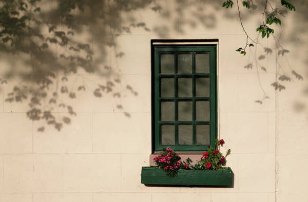 Photograph - Cottage Window by Nicholas Blackwell