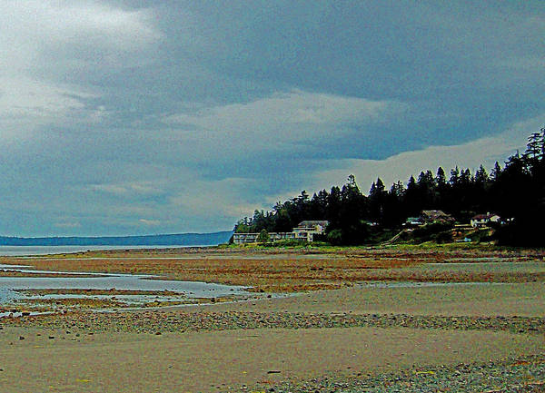 Digital Art - Cottages And Tides by Joseph Coulombe