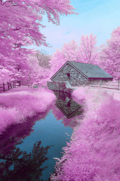 Photograph - Cotton Candy River by Brian Hale