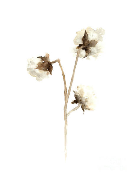 Cotton Painting - Cotton Fine Art Print by Joanna Szmerdt