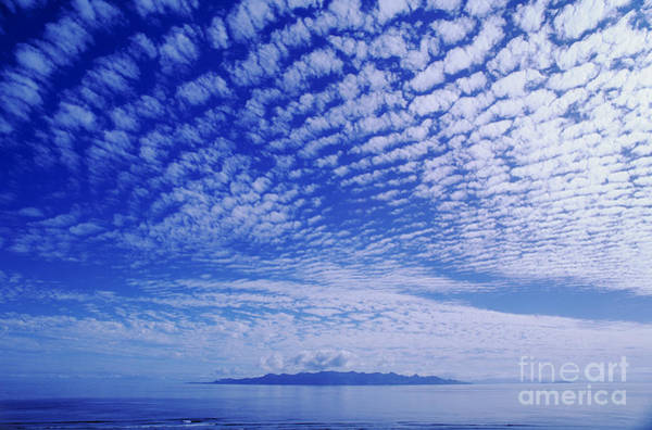 Expanse Photograph - Cotton-like Clouds In Blue Sky by Larry Dale Gordon - Printscapes