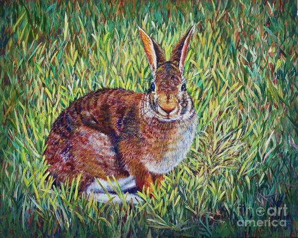 Painting - Cottontail by AnnaJo Vahle