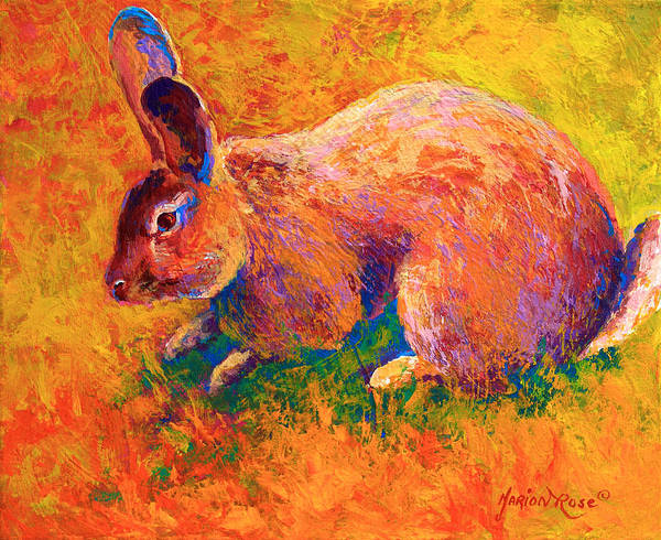 Bunny Rabbit Wall Art - Painting - Cottontail I by Marion Rose