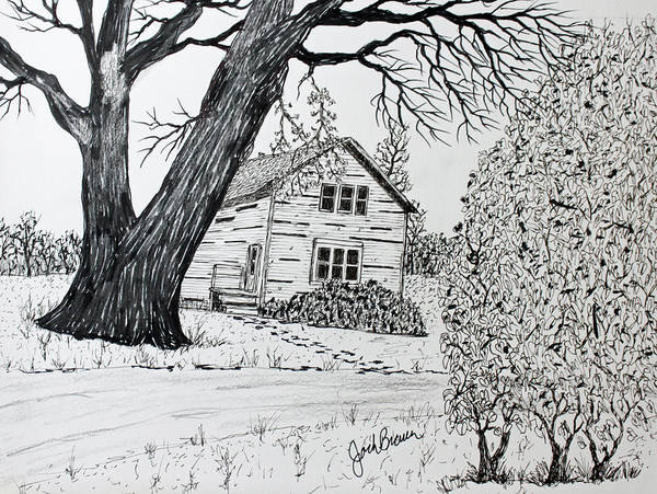 Homestead Drawing - Cottonwood Homestead by Jack G  Brauer