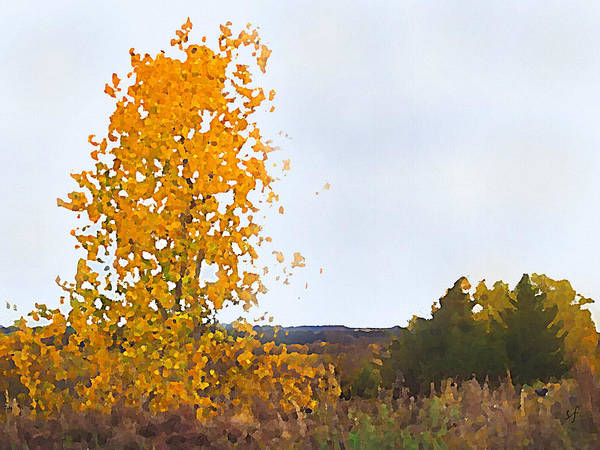 Digital Art - Cottonwood In Fall by Shelli Fitzpatrick