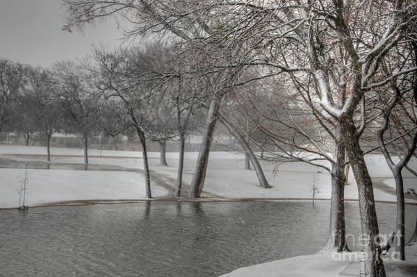Photograph - Cottonwood Park Winter 2 by Bill Hamilton