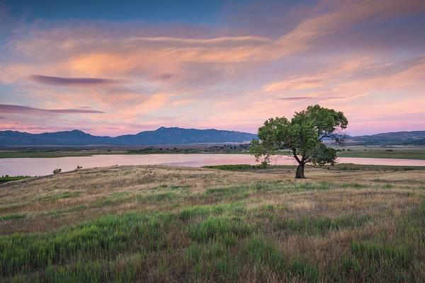 Photograph - Cottonwood Sunset by Alexander Kunz