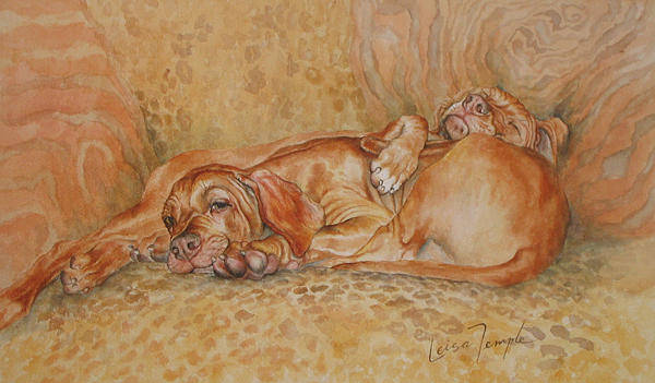 Liver Painting - Couchtrained by Leisa Temple
