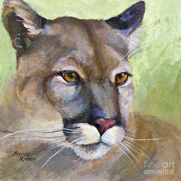 Mountain Lion Painting - Cougar 2 by Bonnie Rinier