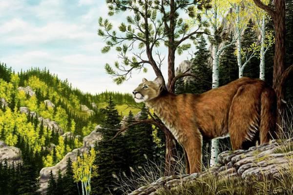 Wall Art - Painting - Cougar Country by Rick Bainbridge