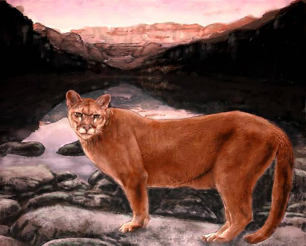 Puma Digital Art - Cougar by Jim Armstrong