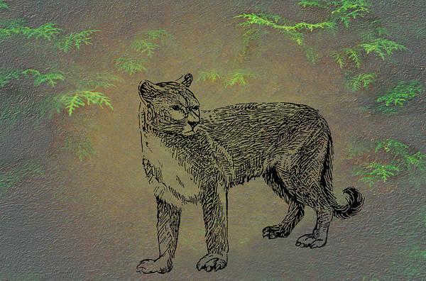 Wall Art - Mixed Media - Cougar by Movie Poster Prints