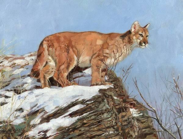 Painting - Cougar, Snowy Ridge by David Stribbling