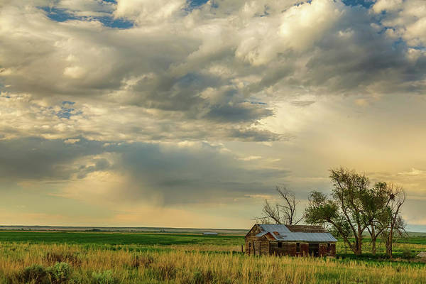 Photograph - Country Air by James BO Insogna