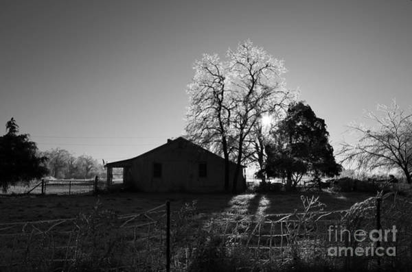 Wall Art - Photograph - Country by Amanda Barcon