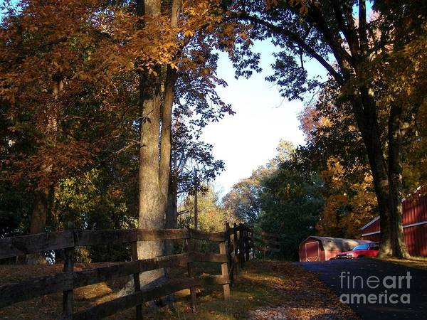 Photograph - Country Autumn by Tammie J Jordan