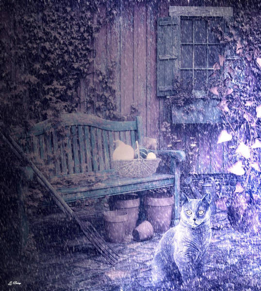 Pumkin Wall Art - Photograph - Country Cat # 2 by G Berry