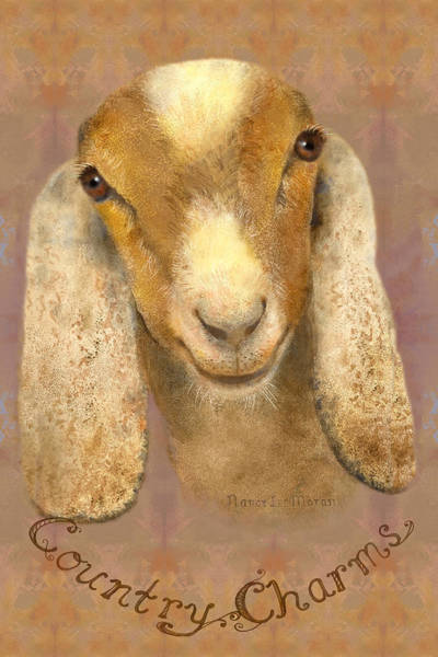 County Fair Painting - Country Charms Nubian Goat With Bright Eyes by Nancy Lee Moran