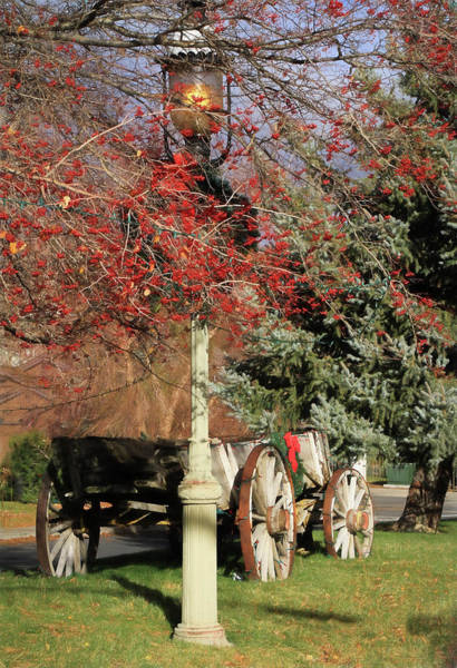 Wagon Wheel Photograph - Country Christmas by Donna Kennedy