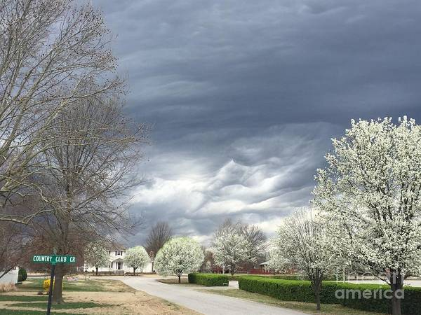 Photograph - Country Club Circle by Jenny Revitz Soper