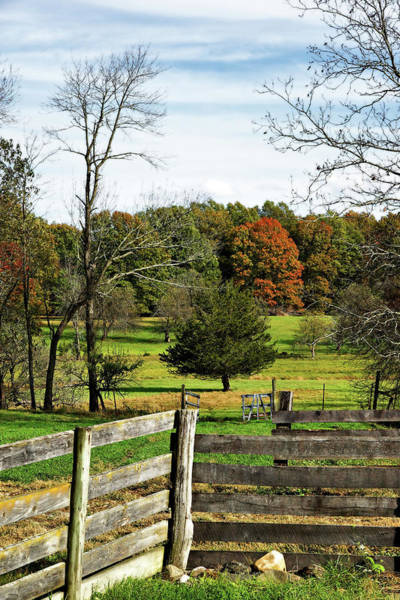 Photograph - Country Corner by Cate Franklyn